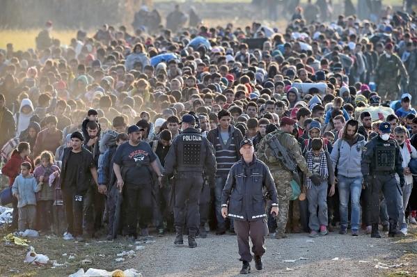 Последствия европейского миграционного кризиса