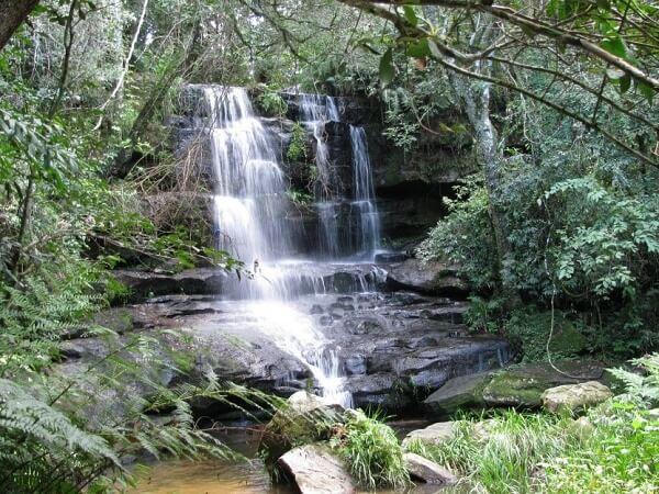 Национальный парк Ибике
