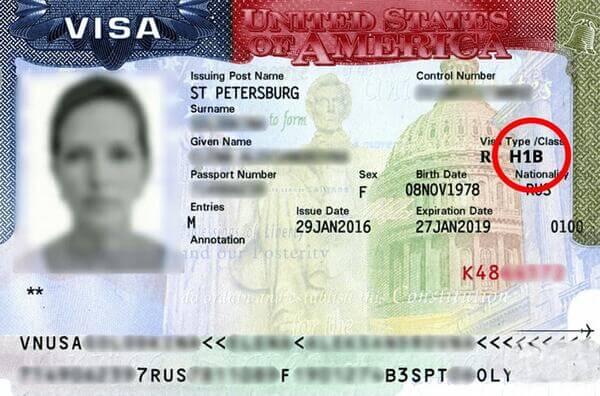 как выглядит виза в Америку