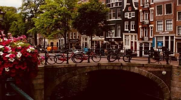 Трудоустройство в Голландии
