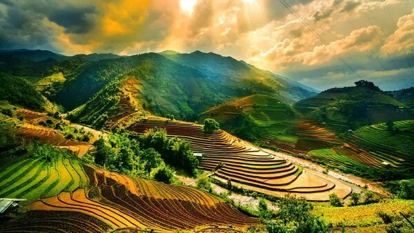 Как переехать во Вьетнам на ПМЖ в 2021 году