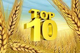 ТОП-10 стран по производству пшеницы