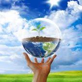 Рейтинг самых экологически чистых стран мира